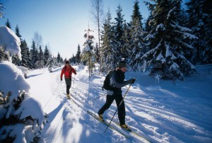 Активный отдых зимой