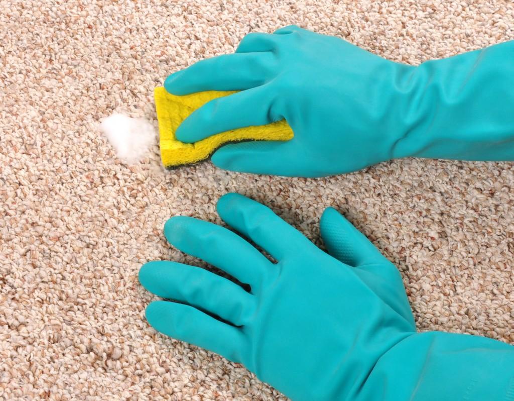 Чистка коврового покрытия своими руками