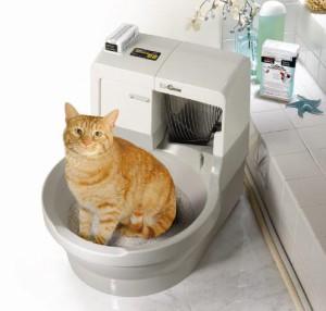 Автоматический туалет для животных